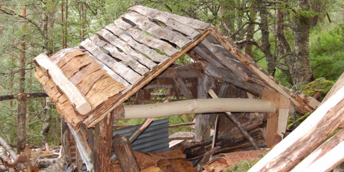 Etter reparasjonen av grindverket, er taket på Jedlaløo her klart til tekking med never og jord. (Foto: Norsk kulturminnefond)