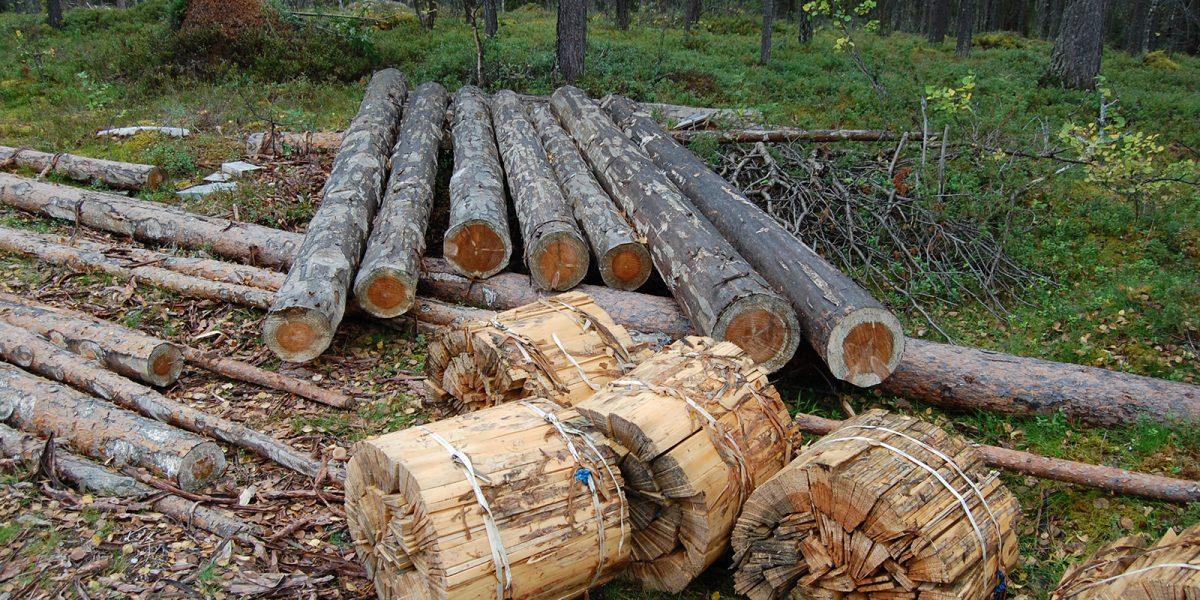 Materialene ble hentet like ved byggeplassen. (Foto: Einar Engen, Kulturminnefondet)
