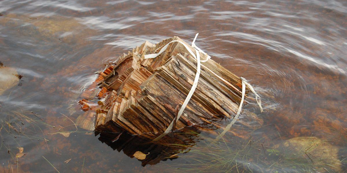 Bunter med stikker i sjøen for utvasking av sukkerinnhold i geitveden. (Foto: Einar Engen, Kulturminnefondet)