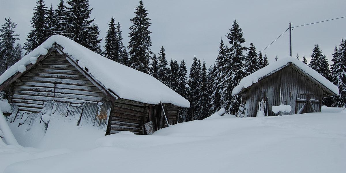 Det hadde vært lett å gi opp håpet om at Mikkelrud igjen skulle bli som det var, når man ser på bildet før eierne satte i gang. (Foto: Einar Engen/Kulturminnefondet)