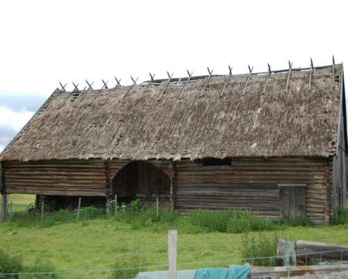 Dette er den eneste registrerte bygningen i Norge hvor den gamle tekkemåten med rughalm er bevart. Slik så låven ut før den ble satt i stand. (Foto: Einar Engen/Kulturminnefondet)