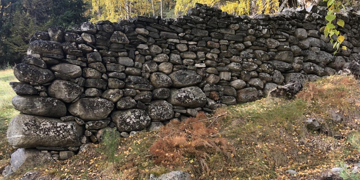 Et markant særtrekk på plassen i den bratte lia er alle de gamle og enormt store tørrsteinsmurene, de er både høye og brede. (Foto: Simen Bjørgen/Kulturminnefondet)