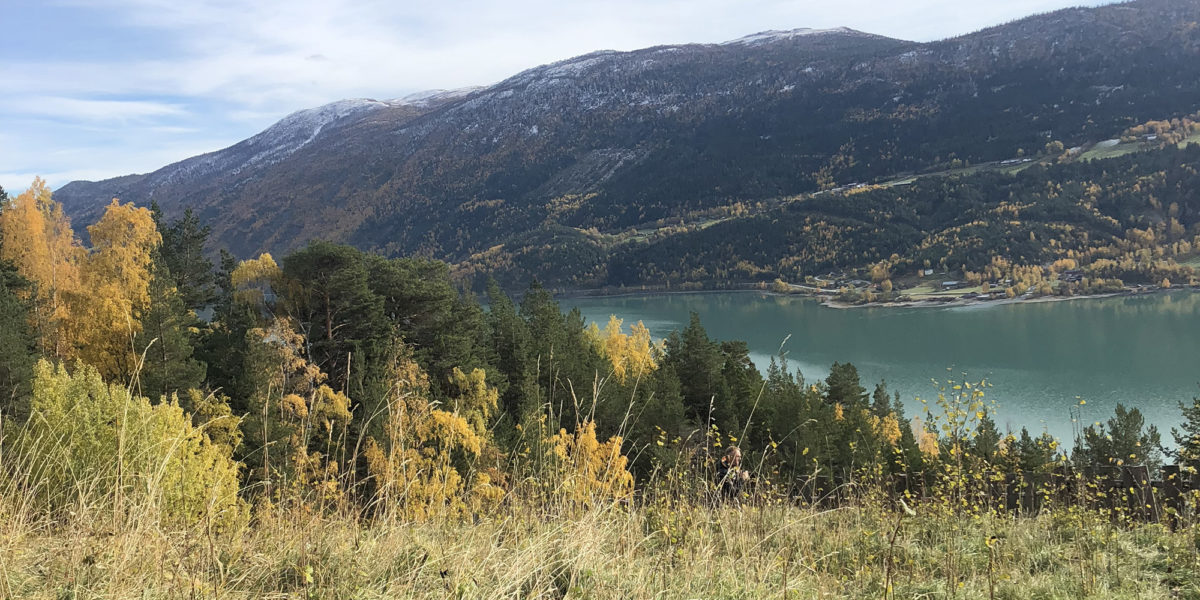 Utsikten fra Grevrusten er utrolig flott, særlig på en godværsdag. (Foto: Simen Bjørgen/Kulturminnefondet)