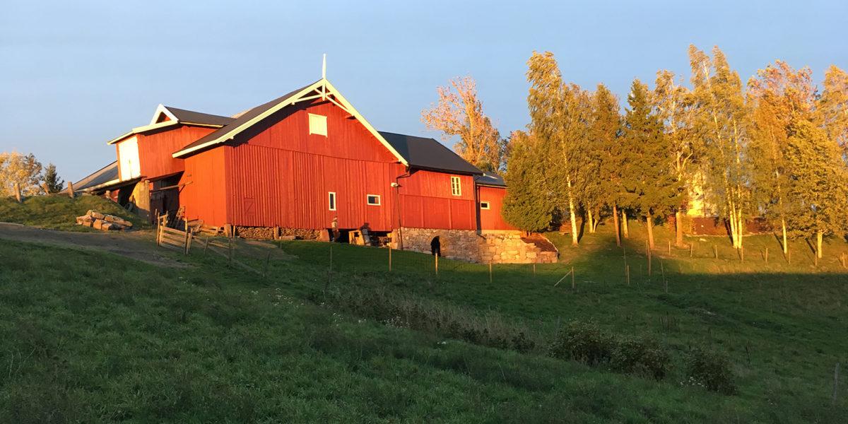 Langs den østre Pilegrimsleden mellom Leirsund og Frogner i Sørum kommune, ligger Myhrer gård. Midt i kulturlandskapet, med bosetning tilbake til jernalderen, er Myhrer rik på historie. (Foto: Trond Myhrer)