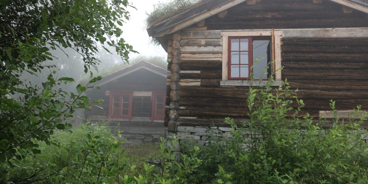 Maristua og Dovrestua glir godt inn i naturen på Ringsveen. Foto: Kjell Nyhus