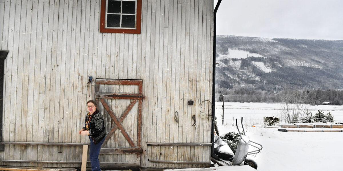 Saglien kjøpte garden sammen med mannen i 2019. Få måneder senere døde han av kreft. – Jeg måtte være folkestygg ei periode for å være i fred med tankene mine, sier hun. Foto: Einar Almehagen
