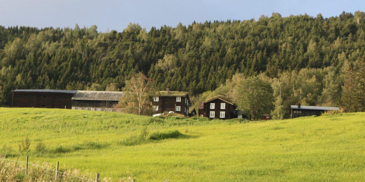 Nordigard Blessom ligg fint til i solsida ovanfor kommunesenteret Vågåmo. Foto: Kjell Nyhus