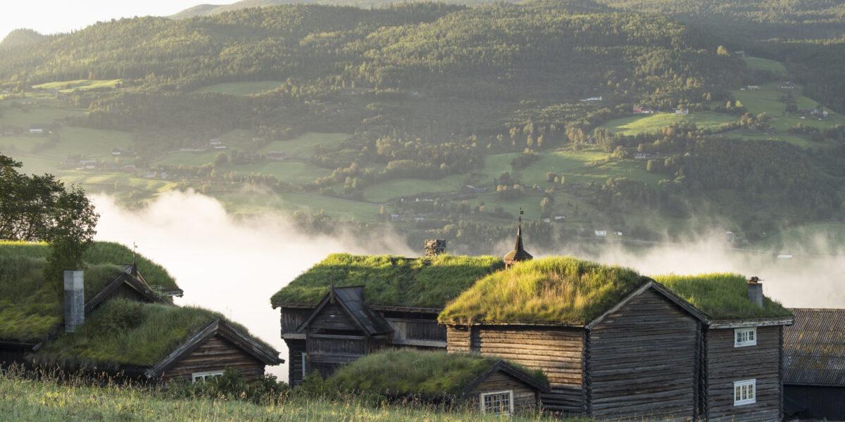 Nordigard Blessom i tåke. Foto H. Eek